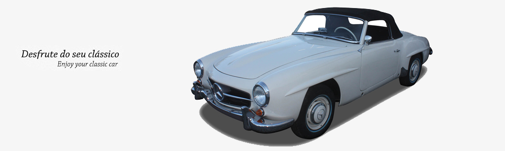 CAR CASE MB190 SL